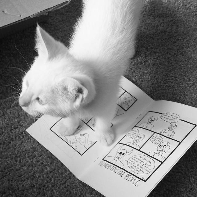 kittenwhite
